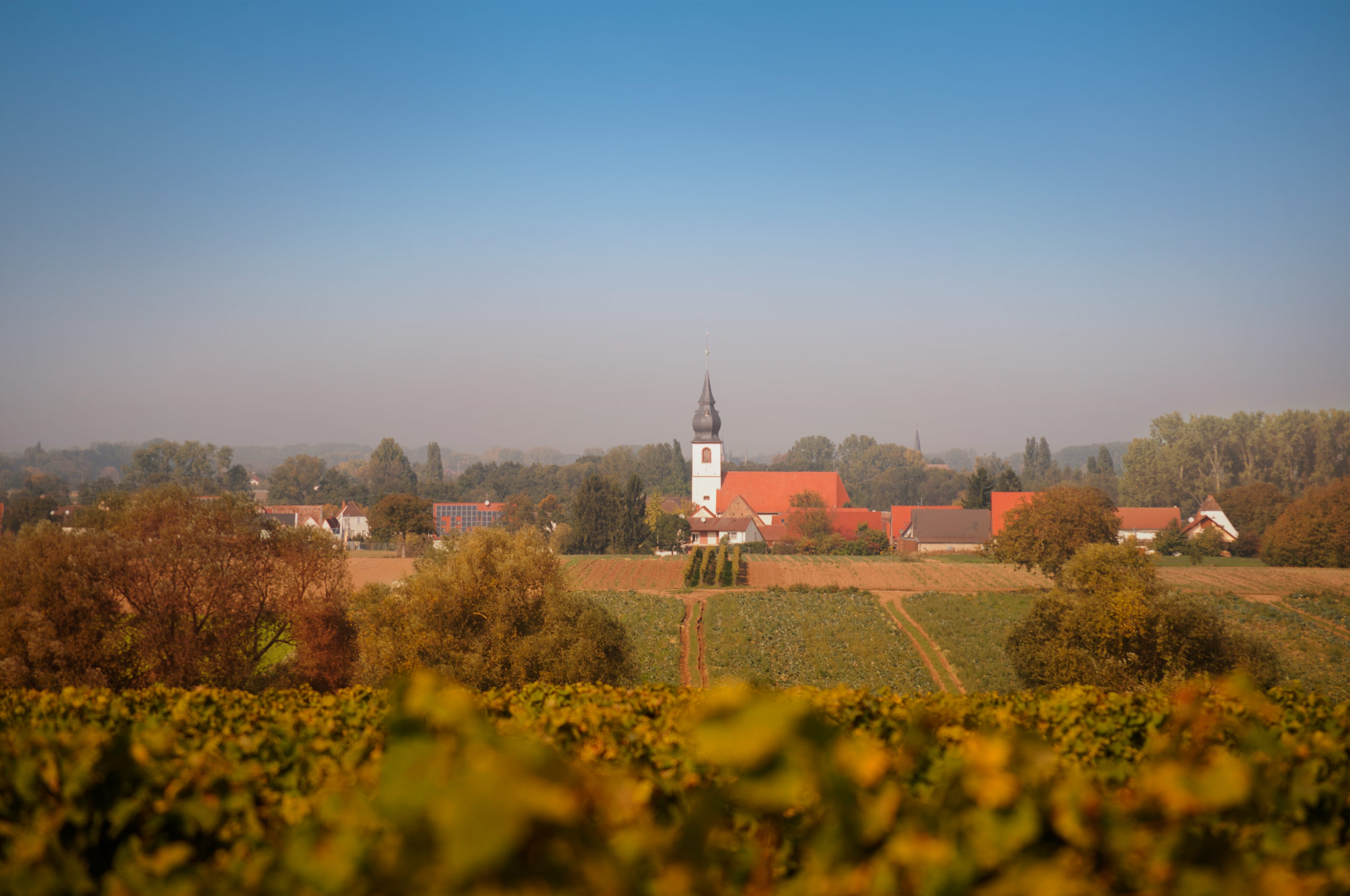 Hintergrundbild Panorama Freisbach